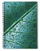 Elephant Ear Leaf Spiral Notebook