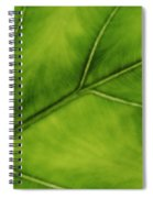Elephant Ear Spiral Notebook