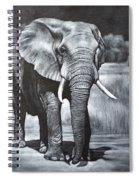 Elephant Night Walker Spiral Notebook