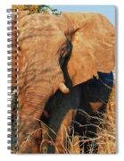 Elephant On Approach Spiral Notebook