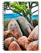 Elephant Rocks And Tree Spiral Notebook