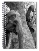 Elephant Tree Black And White  Spiral Notebook