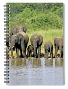 Elephants At The Waterhole   Spiral Notebook