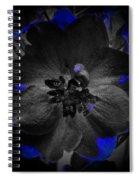 Elfin Princess With Dash Of Blue Spiral Notebook