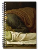 Elisha Raising The Son Of The Shunamite Spiral Notebook