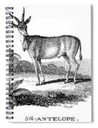 Elk Antelope Spiral Notebook