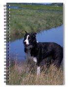 Ella Bella Spiral Notebook