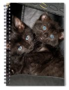 Ellen And Elvira Spiral Notebook