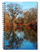 Elm By The Connecticut River In Autumn Spiral Notebook