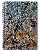 Elusive Woodcock's Woody Environment Spiral Notebook