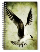 Emancipate Spiral Notebook