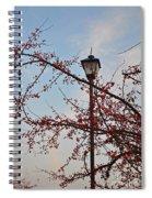 Embrace The Light Spiral Notebook