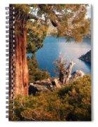 Emerald Bay Overlook Spiral Notebook