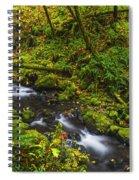 Emerald Falls And Creek In Autumn  Spiral Notebook