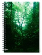Emerald Glade Spiral Notebook