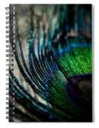 Emerald Shadows Spiral Notebook