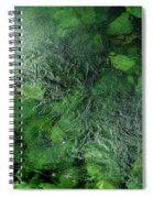 Emeralds Under Ice Spiral Notebook