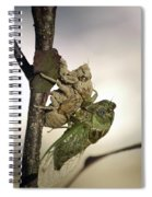 Emerging - Cicada 2 Spiral Notebook