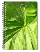Emerging Plants Spiral Notebook