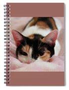 Emily, Too Precious  Spiral Notebook