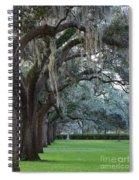 Emmet Park In Savannah Spiral Notebook