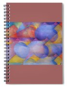 Emotional Perspecitve Spiral Notebook