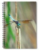Emperor Dragonfly  Spiral Notebook
