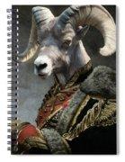 Emperor Jstor Jax Spiral Notebook