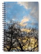 Empire Of Angels Spiral Notebook