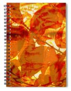 Empress Of The Sun Spiral Notebook