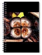 Empty Nests Spiral Notebook
