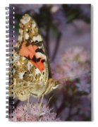 En Garde - Painted Lady - Butterfly Spiral Notebook