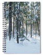 Enchante Spiral Notebook