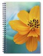 Enchanted Flower Spiral Notebook
