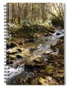 Enchanted Stream - October 2015 Spiral Notebook