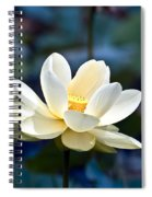Enchanting Lotus Spiral Notebook
