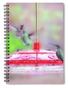 Encounter At The Feeder Spiral Notebook