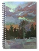 Winter's Last Flame Spiral Notebook