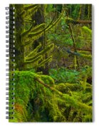 Endless Green Spiral Notebook