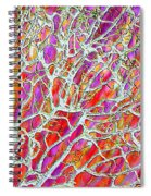 Energetic Abstract Spiral Notebook