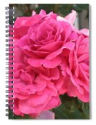 Energizing Pink Roses Spiral Notebook