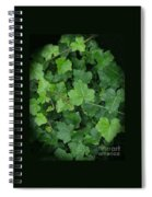 English Ivy Spiral Notebook
