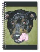 English Staffordshire Bull Terrier  Spiral Notebook