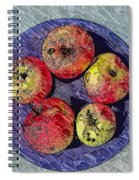 Engraved Wormy Apples Spiral Notebook