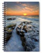 Engulfed Spiral Notebook
