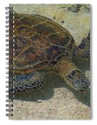 Enjoying The Tidepools Spiral Notebook