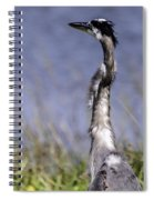 Enjoying The View Spiral Notebook