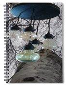 Enlightened Birch Trees Spiral Notebook