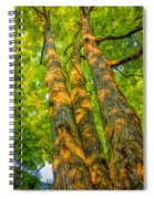 Enlightened Trees Spiral Notebook