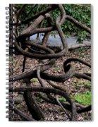 Entanglement  Spiral Notebook